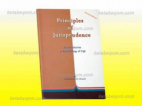 Principles of jurisprudence